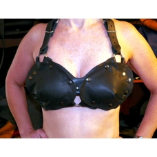 """1"""" Wide Female Harness With Removable Leather Breast Plates"""
