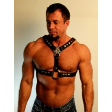 "1-1/2"" WIDE HARNESS WITH WEAVED COWHIDE STRIP"